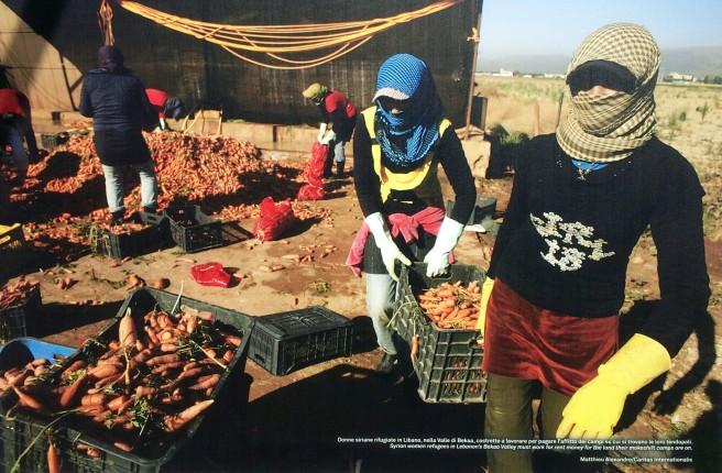 Donne siriane rifugiate in Libano. Qui ritratte, nella Valle di Bekaa, costrette a lavorare per pagare l'affitto dei campi in cui si trovano le loro tendopoli.
